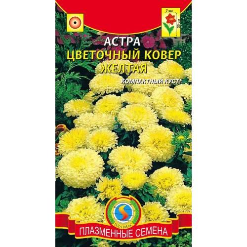 Астра Цветочный ковер желтая