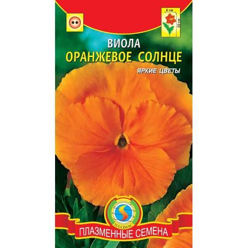 Виола Оранжевое солнце