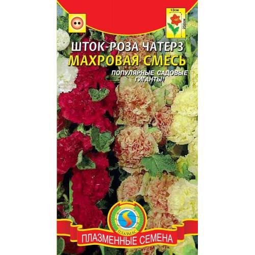 Шток-роза махровая Чатерз, смесь