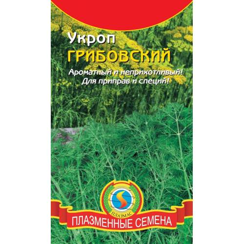 Укроп Грибовский