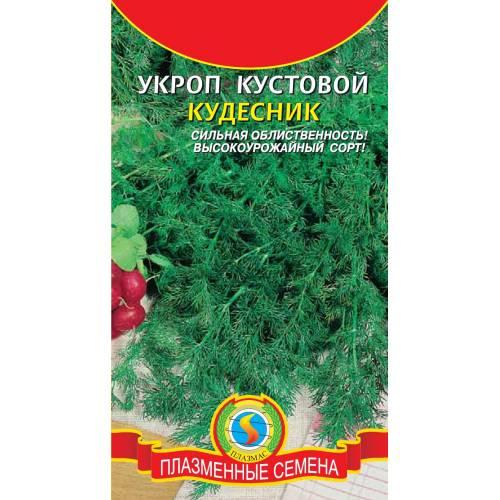 Укроп Кудесник