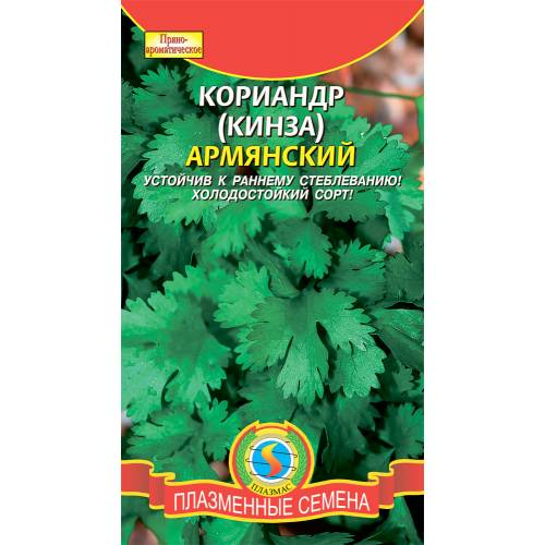 Кориандр Армянский