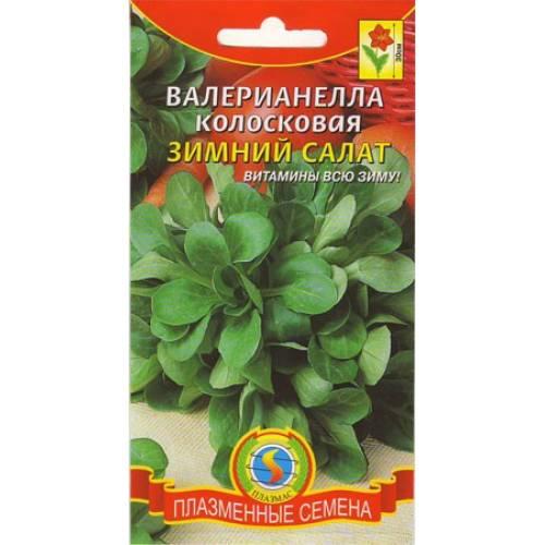 Валерианелла Зимний салат