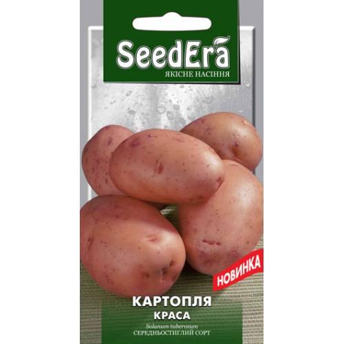 Картофель Краса